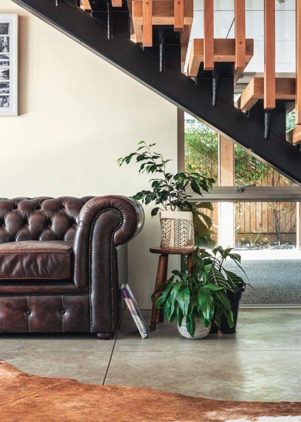 Salon avec peau de vache au sol, canapé en cuire marron et plantes vertes, mis en valeur par notre beige BOULEAU - N°1830 Peintures 1825