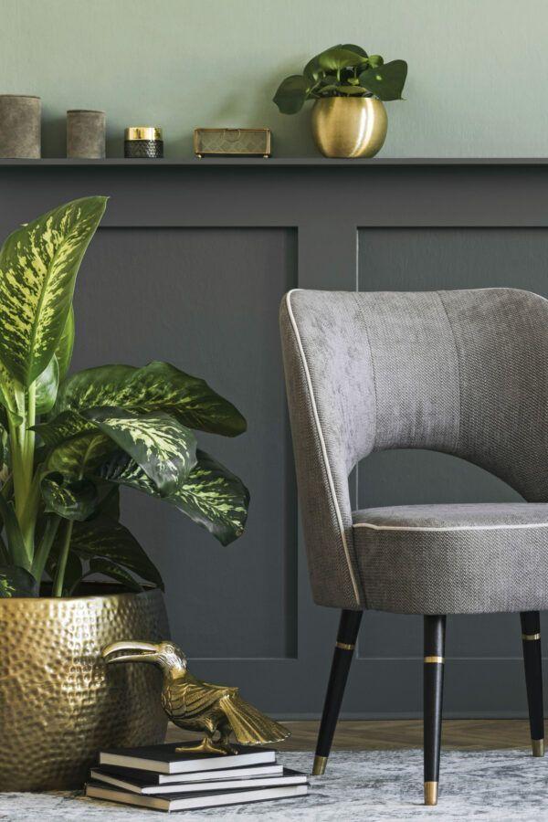 Salon chic avec plantes vertes, mis en valeur par notre gris foncé CONGO - N°2022 Peintures 1825