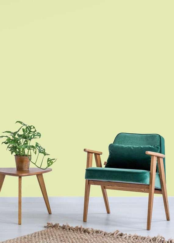 Salon avec chaise vert émeraude en bois et plante verte, mis en valeur par notre vert anis DESERT SUN - N°2078 Peintures 1825