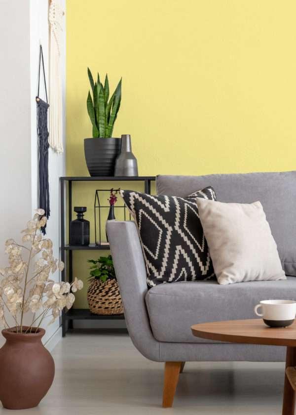 Salon avec vase en terre cuite et canapé en tissu gris, mis en valeur par notre jaune clair POP-CORN - N°2019 Peintures 1825