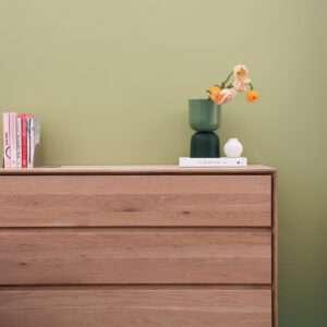 Salon avec commode en bois, mis en valeur par notre vert clair TILLEUL - N°1955. Peintures 1825