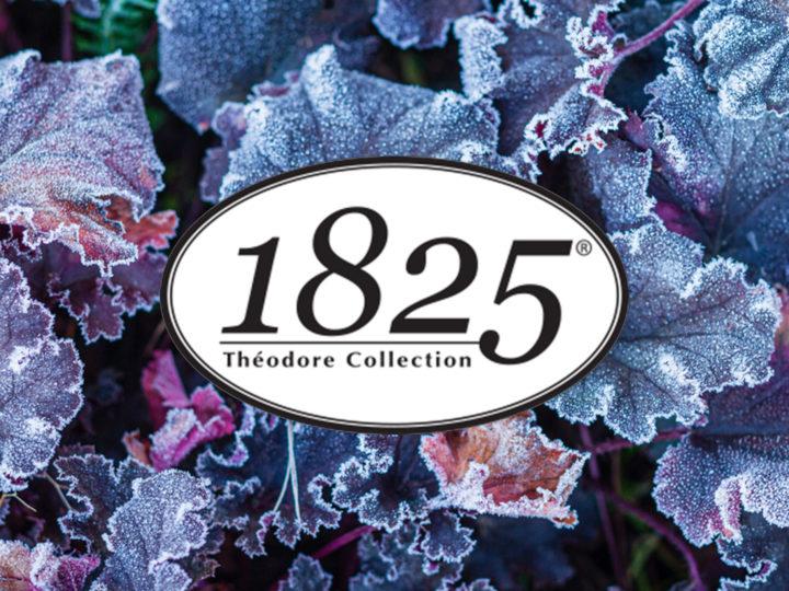 1825® dans la presse : jardins d'hiver